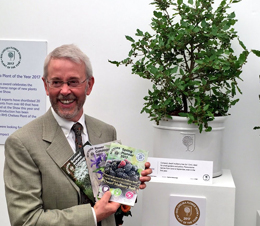 Chelsea Flower Show Plant of the Year 2017